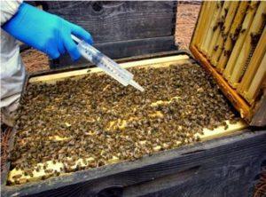 applicazioni di acido formico. apicoltura